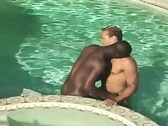 Interracial gay friends blow each other together with have anal sex down the pool