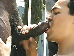 Four musclebound black studs are serviced by their landlord outside